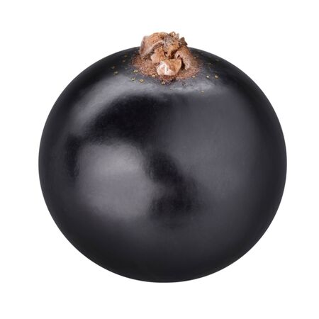 black currants: black currants Clipping Path