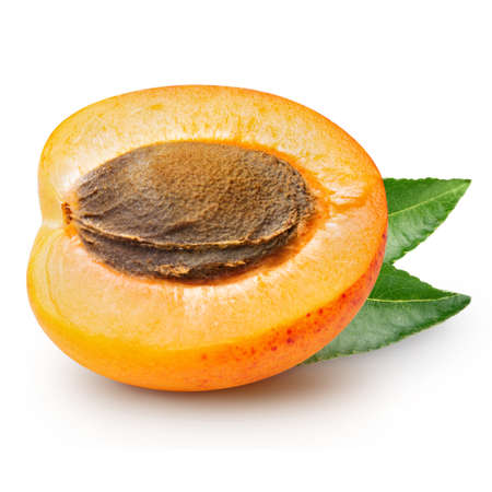 apricots: Fresh apricots with leaves