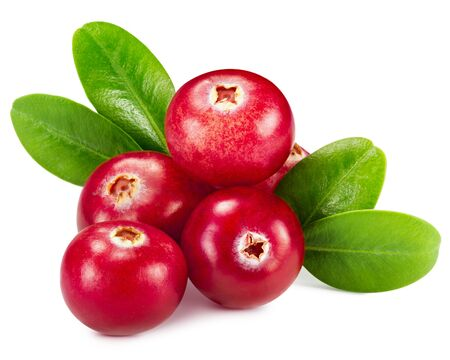 cranberries isolated