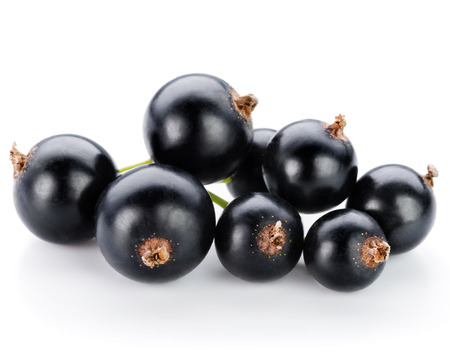 black currants: Black currants berries isolated on white Stock Photo