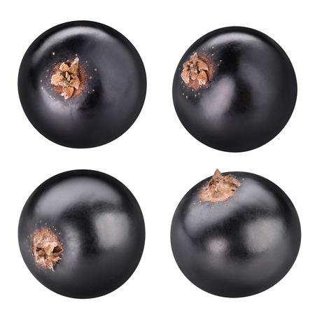 Zwarte aalbessen bessen geïsoleerd op wit Stockfoto