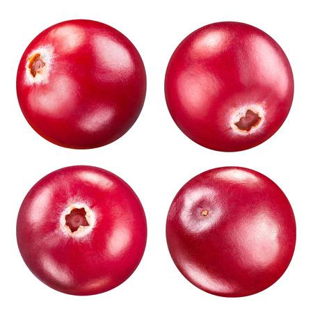 arandanos rojos: arándanos conjunto aislado en blanco Trazado de recorte