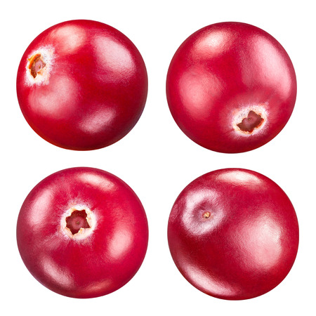 cranberry: cranberries set isolated on white Clipping Path