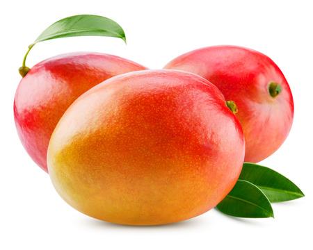 mango: świeże mango samodzielnie na biały