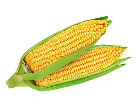 kernels: Corn on the cob kernels close up shot Stock Photo