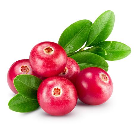 arandanos rojos: arándanos aislados en blanco