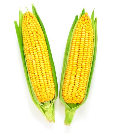 Corn on the cob kernels close up shot Archivio Fotografico