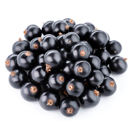 foodstill: Black currants berries isolated on white background Stock Photo