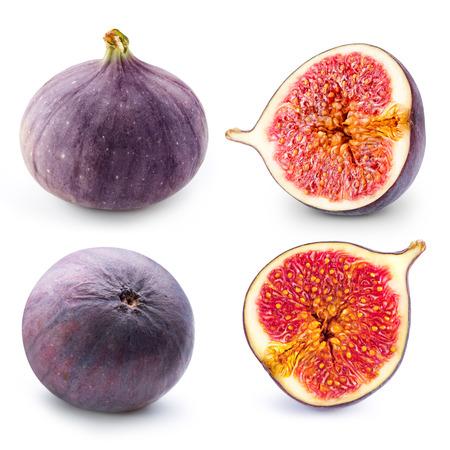 무화과 과일 수집