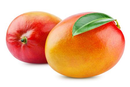 mango leaf: fresh mango isolated on white + Clipping Path Stock Photo