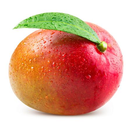 mango slice: Ripe mango isolated on white Clipping Path