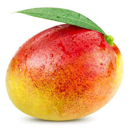 mango: Dojrzałe mango na białym clipping path