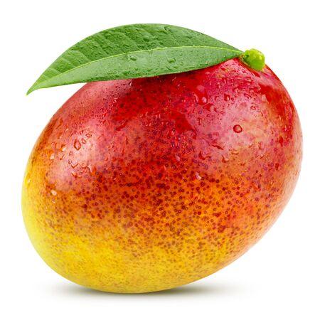 mango: Ripe mango isolated on white Clipping Path