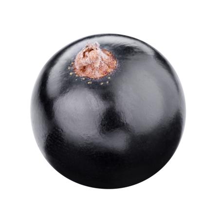currants: fresh black currants berries Stock Photo