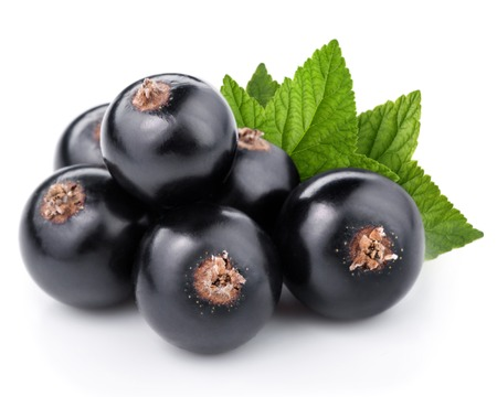 Zwarte bessen met bladeren geïsoleerd Stockfoto
