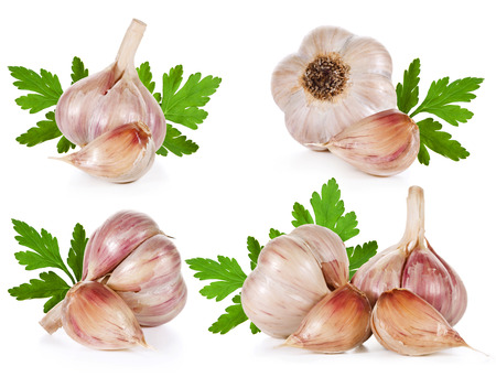 Garlic collection isolated on white background