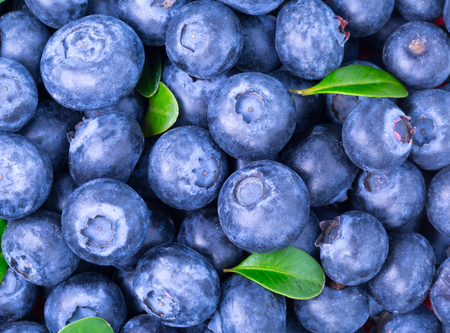 Ripe Blueberry background