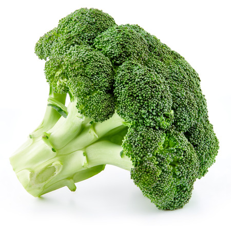 raw broccoli isolated Stok Fotoğraf - 99281428