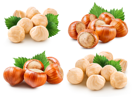 Hazelnuts isolated on white Stock Photo