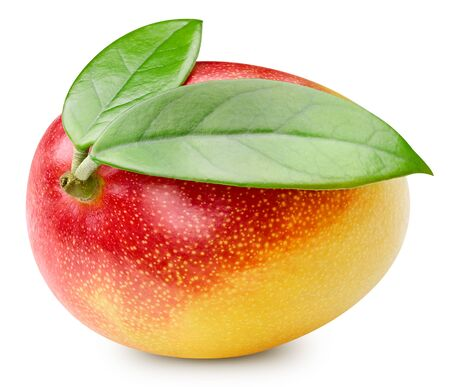 Mango fruit isolated on white Standard-Bild - 128962549