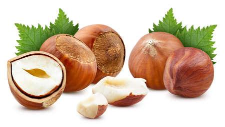 Hazelnut nut with leaves isolated on white background.