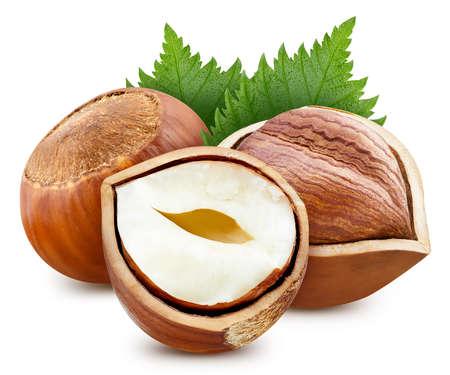 Hazelnut nut half with leaves isolated on white background.