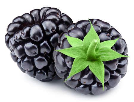 Fresh organic blackbery isolated on white background. Blackbery . Full depth of field Stock Photo