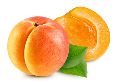 Apricot. Apricot with leaves