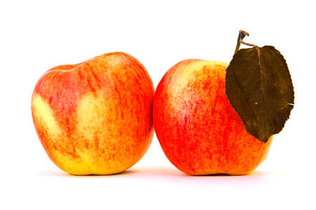 pair of red apples on the white background Stock Photo