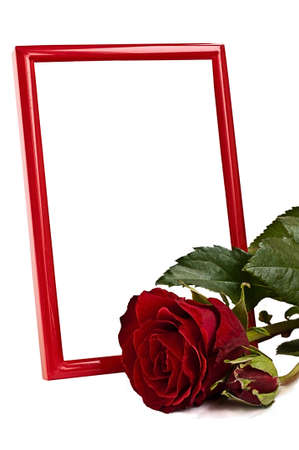 Red vertialy standinf photo frame behind red lying rose on the white background