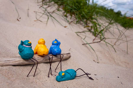 A group of birds on the beach