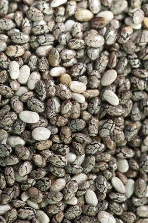 Loads of chia seeds taken in macro