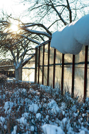 greenhouse during the winter time on the sunny day Stock Photo