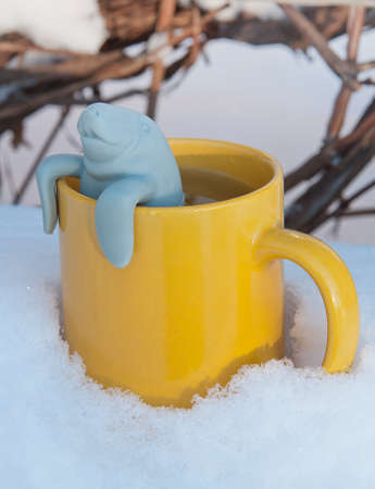 Seal toy in the yeallow cup on the snow