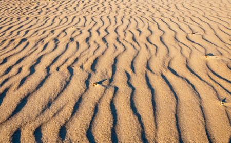 Sand waves on the beach Stock Photo