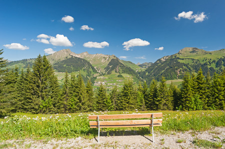 Bench with panoramic view photo