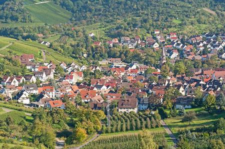 stuttgart: Viticulture in Stuttgart, Germany Stock Photo