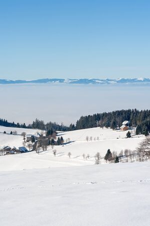 winterly: Winterly Black Forest and Vosges