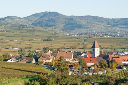 winegrowing: Burkheim, Germany