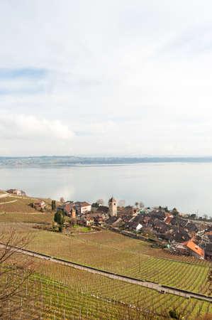 winegrowing: Twann on Lake Biel, Switzerland