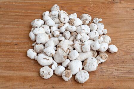 freeze dried: Chu?o Stock Photo