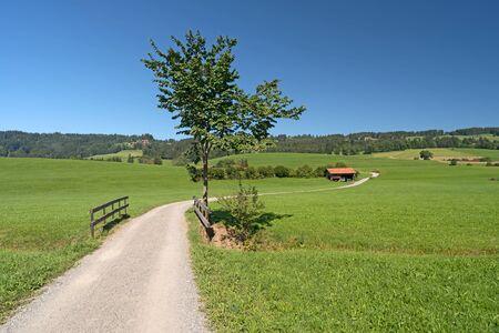 driveway: Driveway in Southern Germany