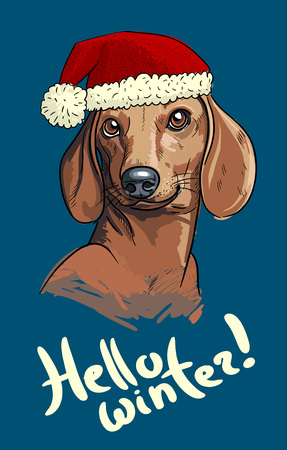 Sketch art illustration of cute duchshund dog wearing a hat. Print for bags and shirts.