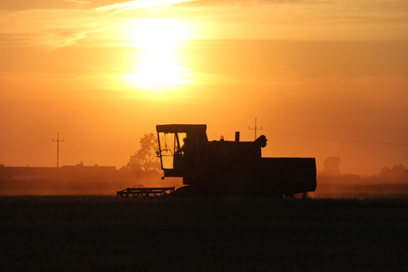 cosechadora: Old combine harvester working on a wheat crop at summer evening