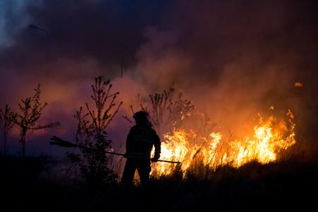 Strażak walczący wieczorem z pożarem buszu.