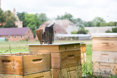 fumigador: Bee smoker standing on a beehive. Foto de archivo