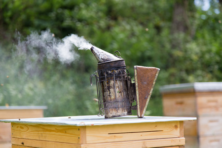 Bee smoker standing on a beehive. Stock Photo