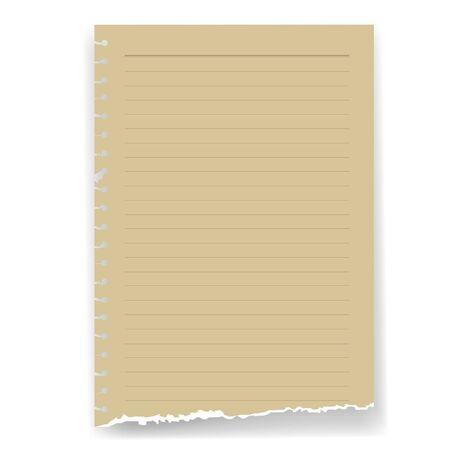 parchment paper: torn lined parchment paper page
