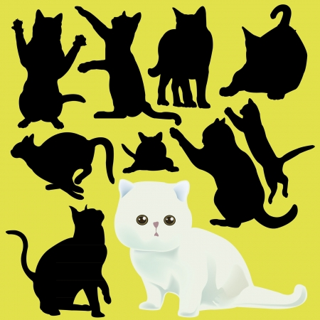 cat vector Vector