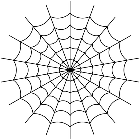 spiders web: cobweb